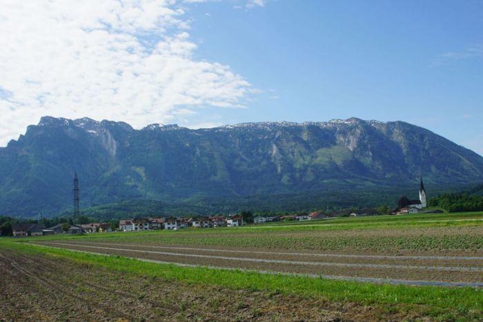 Lebensraum der Kiebitze